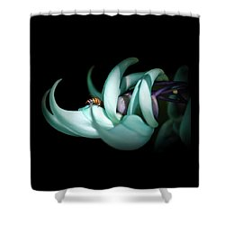 Shower Curtain featuring the photograph Jade by Laura DAddona