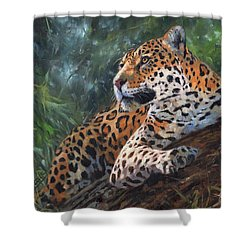 Shower Curtain featuring the painting Jaguar In Tree by David Stribbling