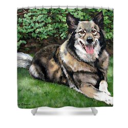Jake Shower Curtain by Sandra Chase