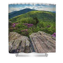 Jane Bald Rhododendrons Shower Curtain