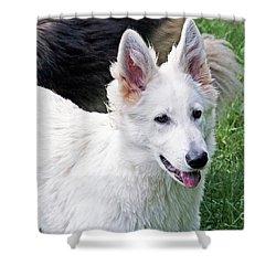 Janie As A Pup Shower Curtain