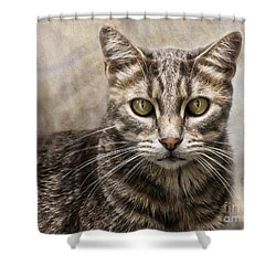Shower Curtain featuring the digital art Janie's Kitty by Rhonda Strickland