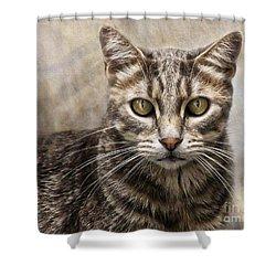 Janie's Kitty Shower Curtain