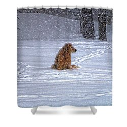 January Blizzard Shower Curtain