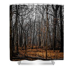 January Forest Rains Shower Curtain