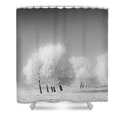 January Frost Shower Curtain by Dan Jurak