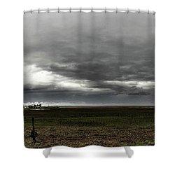 January Surprise Shower Curtain