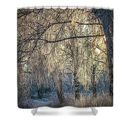 Shower Curtain featuring the photograph January,1-st, 14.35 #h4 by Leif Sohlman
