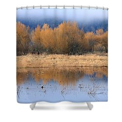 January's Promise Shower Curtain