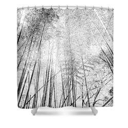 Japan Landscapes Shower Curtain by Hayato Matsumoto