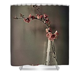 Japanese Inspiration Shower Curtain