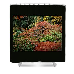 Shower Curtain featuring the photograph Japanese Maple At The Japanese Gardens Portland by Thom Zehrfeld