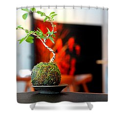 Japanese Style Table Plants Shower Curtain