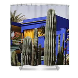 Shower Curtain featuring the photograph Jardin Majorelle 5 by Andrew Fare