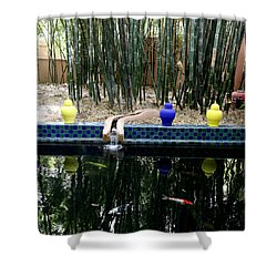 Shower Curtain featuring the photograph Jardin Majorelle by Andrew Fare