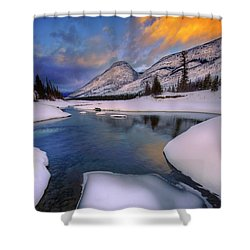 Jasper In The Winter Shower Curtain by Dan Jurak