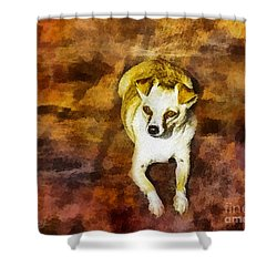 Shower Curtain featuring the photograph Jasper by Rhonda Strickland