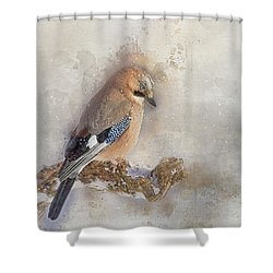 Jay In Falling Snow Shower Curtain