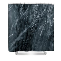 Jazz Grass -  Shower Curtain