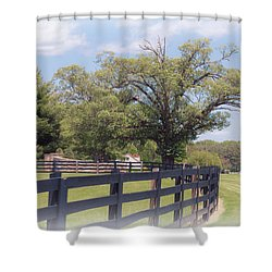 Shower Curtain featuring the photograph Jefferson Landing Series No. 1 by Laura DAddona