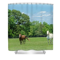 Jefferson Landing Series No. 3 Shower Curtain by Laura DAddona