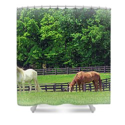 Shower Curtain featuring the photograph Jefferson Landing Series No. 5 by Laura DAddona