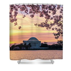 Jefferson Memorial At Sunrise With Blossoms Shower Curtain