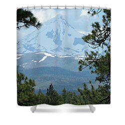 Shower Curtain featuring the photograph Jefferson Pines by Laddie Halupa