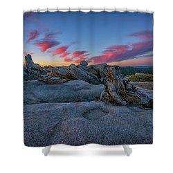Shower Curtain featuring the photograph Jeffrey Pine Dawn by Rick Berk
