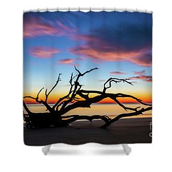 Jekyll Island Sunrise On Driftwood Beach Shower Curtain