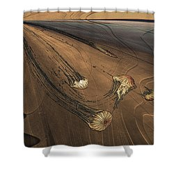Jelly Fish 4 Shower Curtain