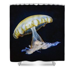 Jellyfish No. 1 Shower Curtain by Alan Toepfer