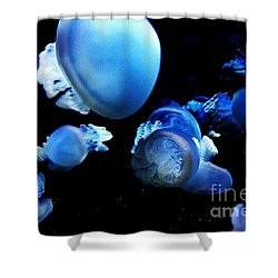 Shower Curtain featuring the photograph Jellyparty by Vanessa Palomino