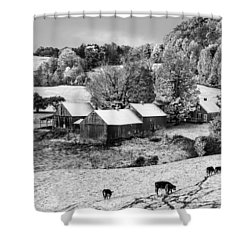 Shower Curtain featuring the photograph Jenne Farm In Autumn Black And White Scenic Landscape by Betty Denise