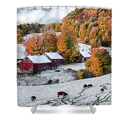 Jenne Farm, Reading, Vt Shower Curtain by Betty Denise