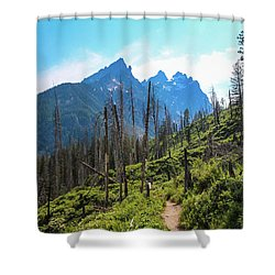 Jenny Lake Trail Shower Curtain