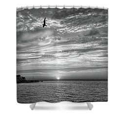 Jersey Shore Sunset In Black And White Shower Curtain