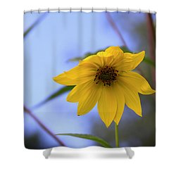 Jerusalem Artichoke And Blue Sky Shower Curtain