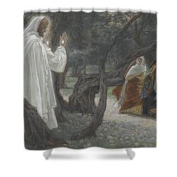 Jesus Appears To The Holy Women Shower Curtain by Tissot