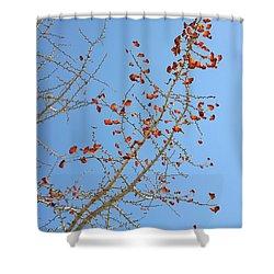 Jewel Tones Shower Curtain
