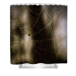 Jeweled Weaver Shower Curtain