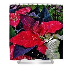 Jingle Bell Rock 2 Shower Curtain by VLee Watson