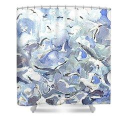 Jodrey Pier Shower Curtain