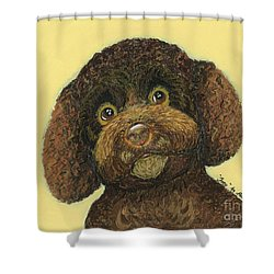 Shower Curtain featuring the pastel Joey Poodle Mix by Ania M Milo