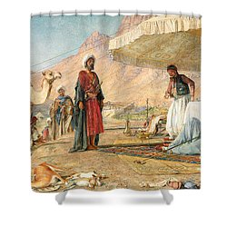 Shower Curtain featuring the photograph John Frederick Lewis Mount Sinai 1842 by Munir Alawi