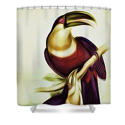 John Gould And Edward Lear Family Of Toucans Interpreted Shower Curtain