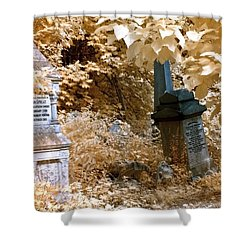 Autumnal Walk At Abney Park Cemetery Shower Curtain