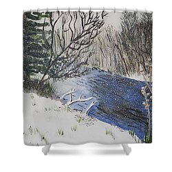 Shower Curtain featuring the painting Johnson Vermont In Spring Snow Storm by Donna Walsh