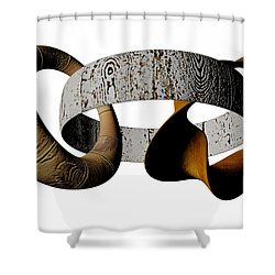 Shower Curtain featuring the sculpture Join Circles by R Muirhead Art