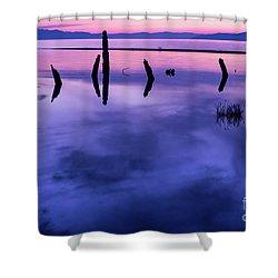 Jojkjk Shower Curtain by Gary Whitton